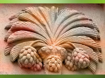 D'après le dattier du tympan du Palais Jacques Cœur, cité par Fulcanelli (Maisons Philosophales), XVe siècle, Bourges, France. (Marsailly/Blogostelle)