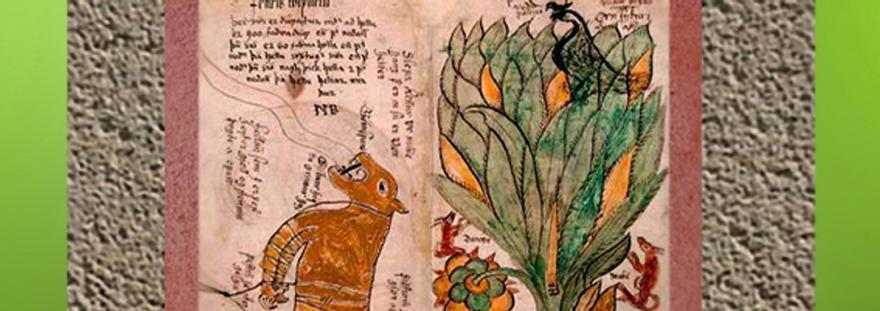 D'après le symbolisme de l'arbre, histoire du sacré. (Marsailly/Blogostelle)