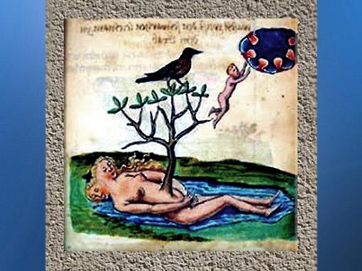 D'après l'iconographie alchimique, arbre et naissance de l'or philosophal. (Marsailly/Blogostelle)