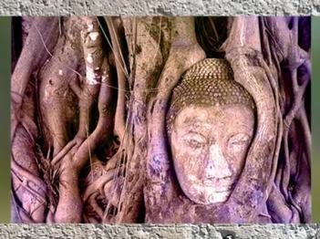 D'après le visage de pierre de Buddha émergeant de l'Arbre, Wat Maha That, parc Ayutthaya, Thaïlande. (Marsailly/Blogostelle)