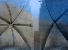 D'après des voûtes gothiques, chassé- croisé de lignes arborées. (Marsailly/Blogostelle)