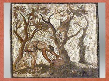 D'après la récolte des pommes, mosaïque Saint-Romain-en-Gal, IIIe siècle apjc, Vienne, Rhône-Alpes, Gaule Romaine. (Marsailly/Blogostelle)