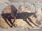 D'après un capridé, période d'Obeid, céramique peinte, vers 5000 - 4500 avjc, Mésopotamie, Irak. (Marsailly/Blogostelle.)