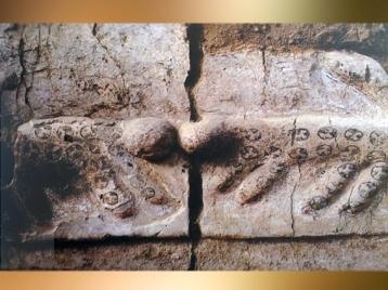 D'après un relief peint, Léopards, VIIe-VIe millénaire avjc, néolithique, çatal HüyüK, Anatolie, Levant Néolithique. (Marsailly/Blogostelle)