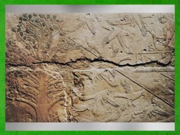 D'après la Chasse aux oiseaux, calcaire peint, relief en méplat, mastaba d'Akhhétep, vers 2750-2625 avjc, Ve dynastie, Ancien Empire, Saqqara, Égypte Ancienne. (Marsailly/Blogostelle)