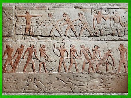 D'après une scène de chasse aux oiseaux et de pêche, mastaba d'Akhhétep et de son fils Ptahotep, Ve dynastie, Ancien Empire, Saqqara, Égypte Ancienne. (Marsailly/Blogostelle)
