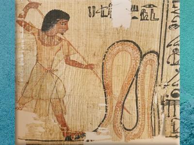 D'après Apophis transpercé par une lance, papyrus, Livre des Morts de Ptahmes, XVIIIe dynastie, Nouvel Empire, Égypte Ancienne. (Marsailly/Blogostelle)
