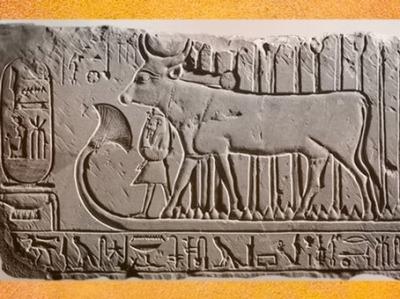 D'après Hathor, Vache Céleste, protectrice de Ramsès II, relief calcaire, XIXe dynastie, Nouvel Empire, Deir el-Medineh, Égypte Ancienne. (Marsailly/Blogostelle)
