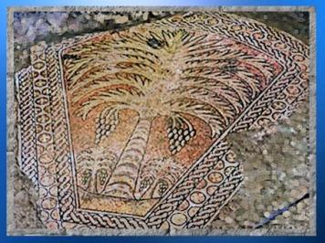 D'après le palmier-dattier, mosaïque, église du Siège de Marie, Kathisma, proche de Bethléem, Cisjordanie, Palestine, période byzantine. (Marsailly/Blogostelle)