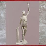 D'après un Ecorché, étude anatomie, d'Edme Bouchardon, plâtre, XVIIIe siècle. (Marsailly/Blogostelle)