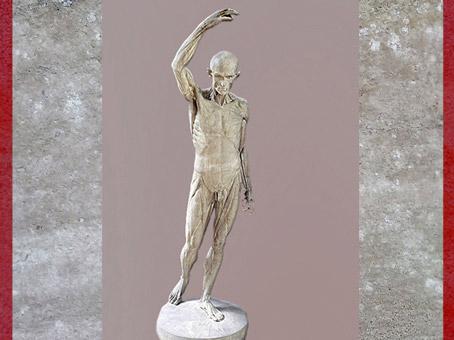D'après un Écorché, étude d'anatomie, de Jean-Antoine Houdon, moulage en plâtre, XVIIIe siècle. (Marsailly/Blogostelle)