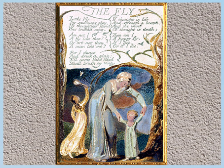 D'après Songs of Innocence and of Experience, The Fly, de William Blake, 1794, encre, aquarelle, fin XVIIIe siècle. (Marsailly/Blogostelle)