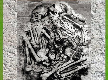 D'après des défunts inhumés par deux, grotte des enfants, Grimaldi, Italie, vers 35 000 - 30 000 ans avjc, paléolithique supérieur. (Marsailly/Blogostelle)