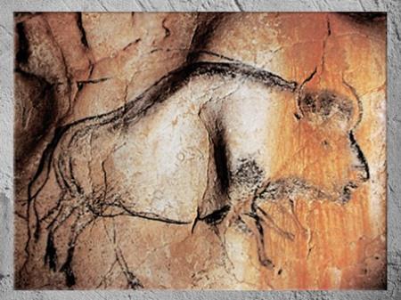 D'après un  bison, grotte Chauvet, vers 36 000 ans avjc, Pont d'Arc, Ardèche, Aurignacien, paléolithique supérieur. (Marsailly/Blogostelle)