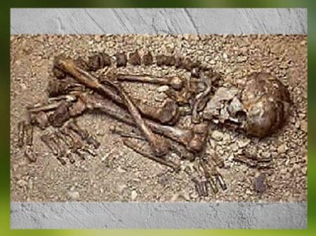 D'après une sépulture, position fœtale, vers 12 000 -10 000 avjc, Magdalénien, abri sous roche de Raymonden, Chancelade, Dordogne, paléolithique supérieur. (Marsailly/Blogostelle)