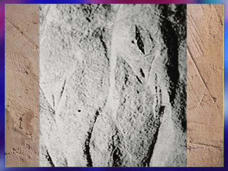 D'après deux corps féminins sexués, Roc-aux-Sorciers, 20 000 – 18 000 ans avjc, solutréen, Vienne, France, paléolithique supérieur. (Marsailly/Blogostelle)