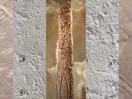 D'après un bâton gravé magdalénien à silhouette humaine, Bruniquel, Tarn, France, paléolithique supérieur. (Marsailly/Blogostelle)