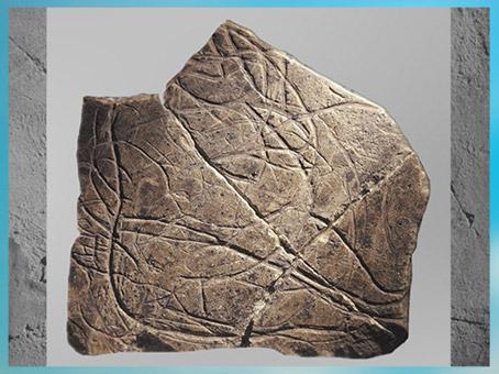 D'après une figure féminine, gravure, calcaire, grotte de La Marche, vers 14 000 ans, Magdalénien, Poitou, France, paléolithique supérieur. (Marsailly/Blogostelle)