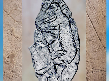 D'après un personnage à museau, rondelle, os gravé, Mas-d'Azil, Ariège, Magdalénien France, paléolithique supérieur. (Marsailly/Blogostelle)