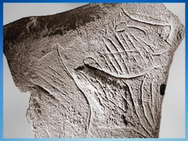 D'après une gravure sur bloc, visage, grotte de La Marche, Lussac-les-Châteaux, Vienne, France, paléolithique supérieur. (Marsailly/Blogostelle)
