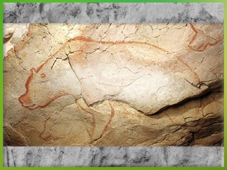 D'après un ours, peinture, grotte Chauvet, vers 36 000 ans avjc, Pont d'Arc, Ardèche, Aurignacien, paléolithique supérieur. (Marsailly/Blogostelle)