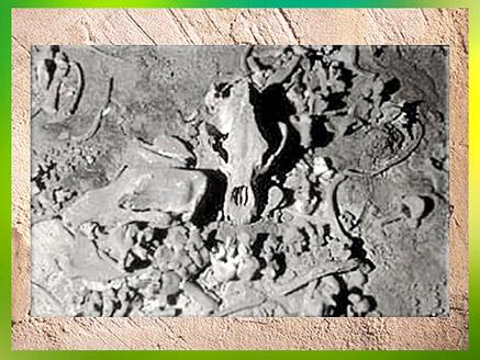 D'après un amas d'ossements d'ours, grotte Chauvet, vers 36 000 ans avjc, Pont d'Arc, Ardèche, Aurignacien, paléolithique supérieur. (Marsailly/Blogostelle)