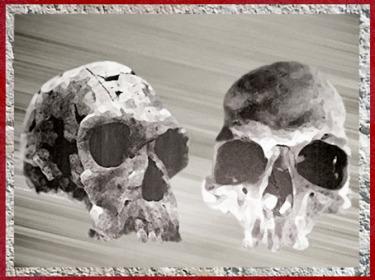 D'après des crânes de type Homo habilis, paléolithique inférieur. (Marsailly/Blogostelle)