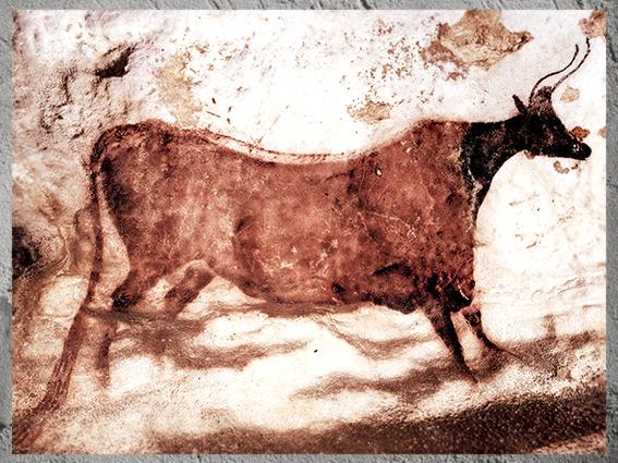 D'après une vache, peinture rouge, grotte de Lascaux, Dordogne, France, Magdalénien, paléolithique supérieur. (Marsailly/Blogostelle)