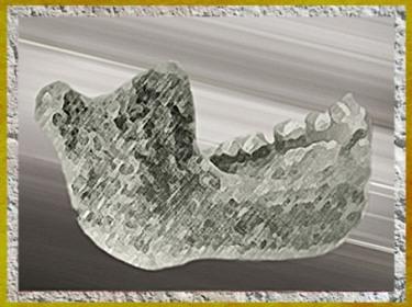 D'après la mâchoire de Mauer, Homo Erectus, vers 500 000 ans avjc, paléolithique inférieur. (Marsailly/Blogostelle)