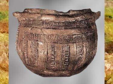 D'après une poterie,  terre cuite décorée, céramique cardiale, Sud de la France, néolithique.  (Marsailly/Blogostelle)