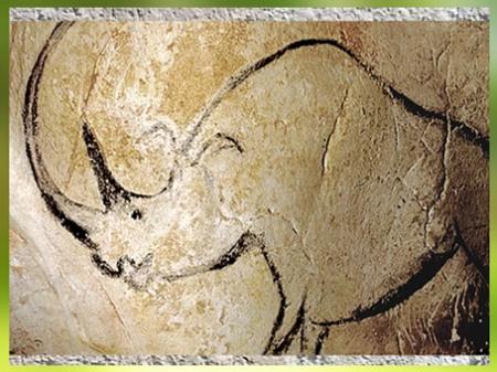 D'après un rhinocéros, peinture rupestre, grotte Chauvet, vers 36 000 avjc, aurignacien, Ardèche, France, paléolithique supérieur. (Marsailly/Blogostelle)