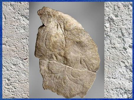D'après représentations vulvaires, gravures sur bloc, vers 30 000 avjc, abri Blanchard, Dordogne, France. aurignacien, paléolithique. (Marsailly/Blogostelle)