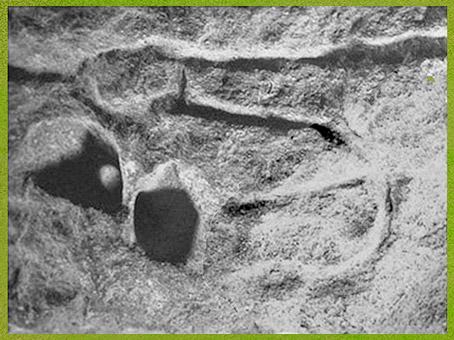 D'après une représentation sexuelle, gravure, aurignacien, abri-sous-roche de Castanet, France, paléolithique supérieur. (Marsailly/Blogostelle)