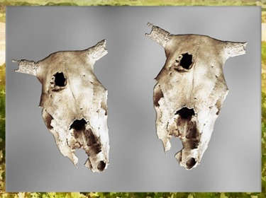 D'après des crânes de bovidés, village de Champ-Durand, Nieul-sur-l'Autise Vendée, France, néolithique. (Marsailly/Blogostelle)
