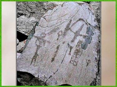 D'après la stèle du Chef de tribu, art rupestre, mont Bego, Vallée des Merveilles, fin IIIe-début IIe millénaire avjc, Alpes Maritimes, âge du Cuivre et du Bronze. (Marsailly/Blogostelle)